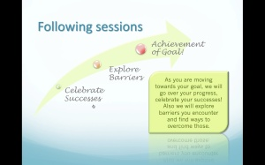 Celebrate Success & Explore Barriers